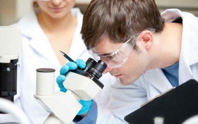 Leucemia Linfatica Cronica nuovi aggiornamenti